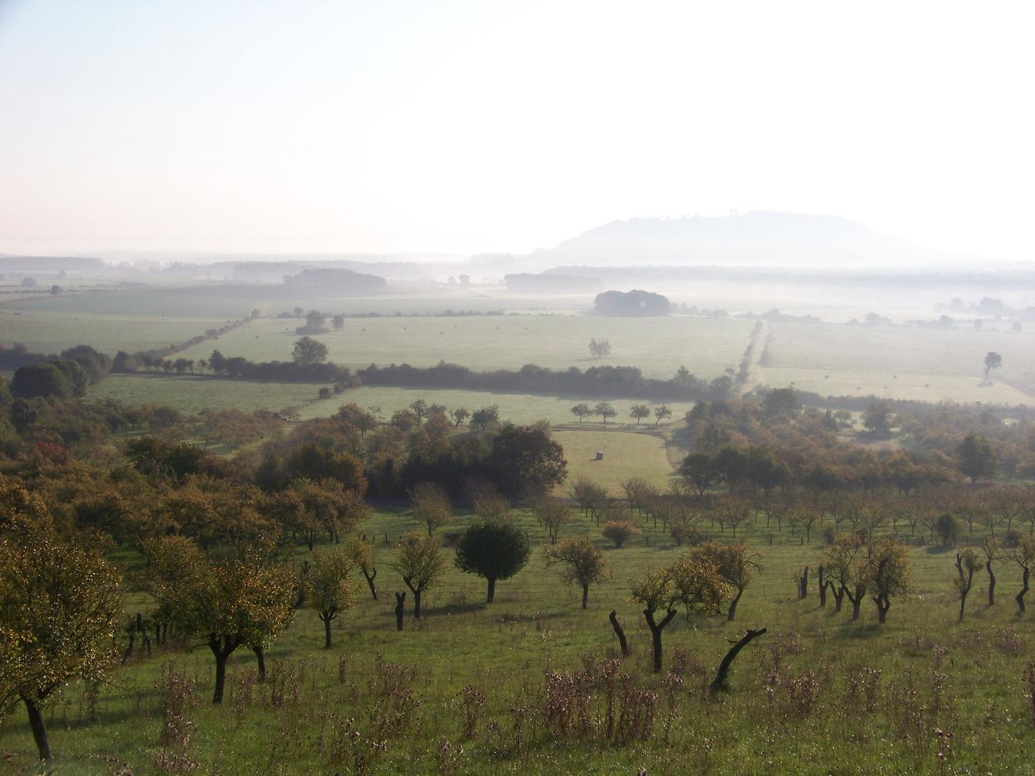 Vergers Buxerulles Montsec